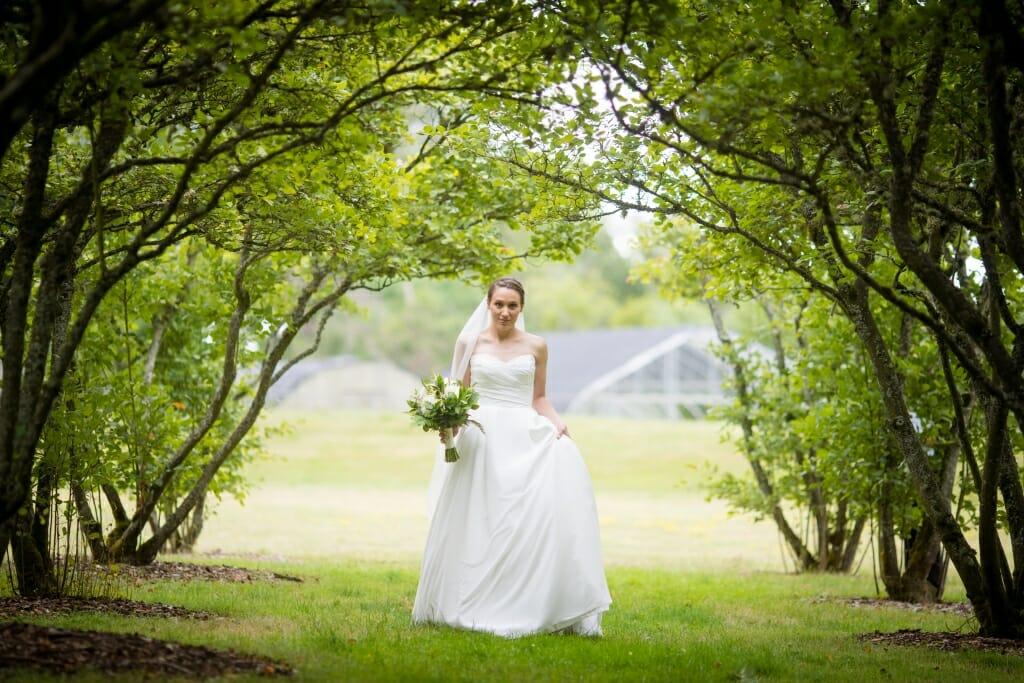Wedding 310